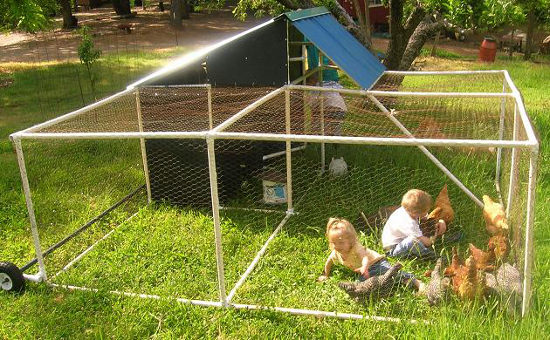PVC-pipe-hen-house-diy