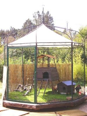 gazebo-chicken-coop