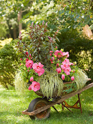 wheelbarrow-garden_2