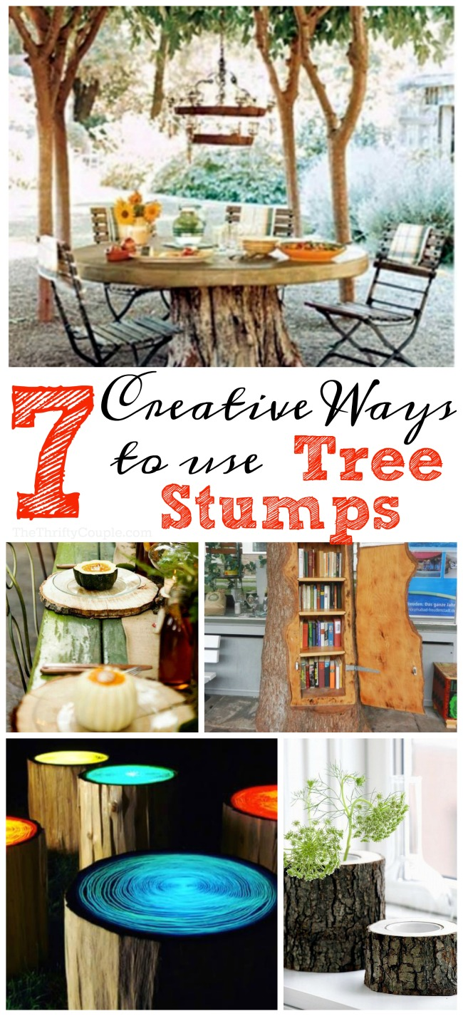 7-creative-ways-to-use-tree-stumps
