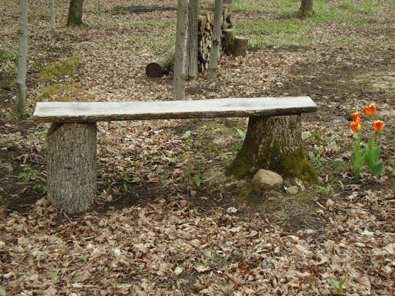 tree-stump-bench